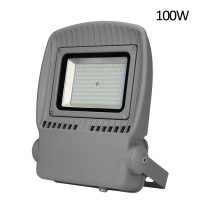 Project lighting led flood light 100W 110lm/W high brightness